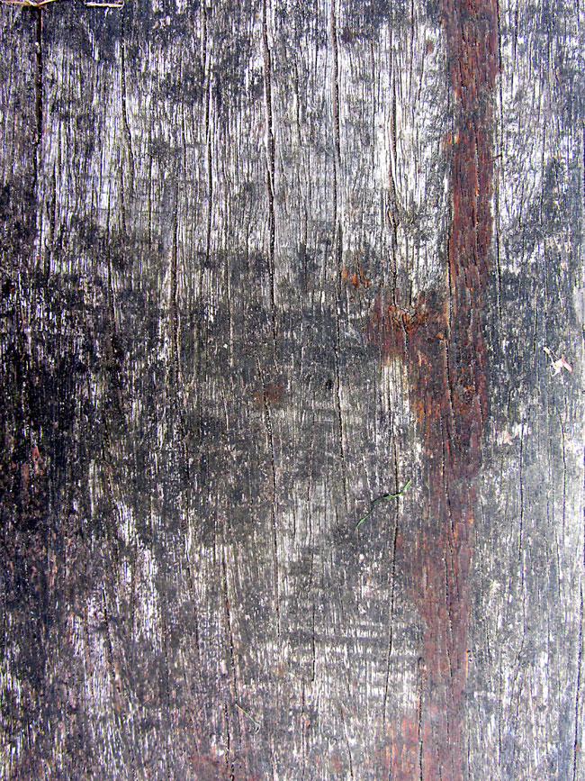 Free Photoshop Texture - Old Wooden Door